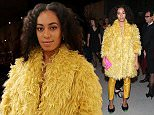 Solange Knowles Puff.jpg