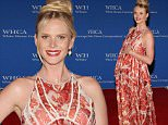WASHINGTON, DC - APRIL 25:  Model Anne V attends the 101st Annual White House Correspondents' Association Dinner at the  Washington Hilton on April 25, 2015 in Washington, DC.  (Photo by Paul Morigi/WireImage)