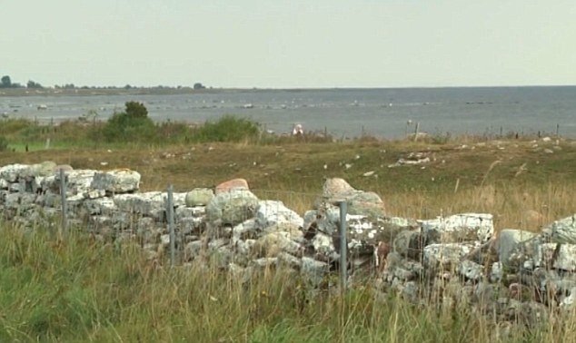 Preserved: The site on the island of Öland, just off the Swedish coast, has remained untouched for centuries, and resembled a modern day crime scene