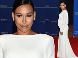 WASHINGTON, DC - APRIL 25:  Naya Rivera attends the 101st Annual White House Correspondents' Association Dinner at the Washington Hilton on April 25, 2015 in Washington, DC.  (Photo by Michael Loccisano/Getty Images)