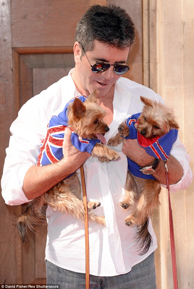 Best of British: Simon, seen with his dogs, Diddly and Squiddly, recently resumed work on the latest series of Britain's Got Talent