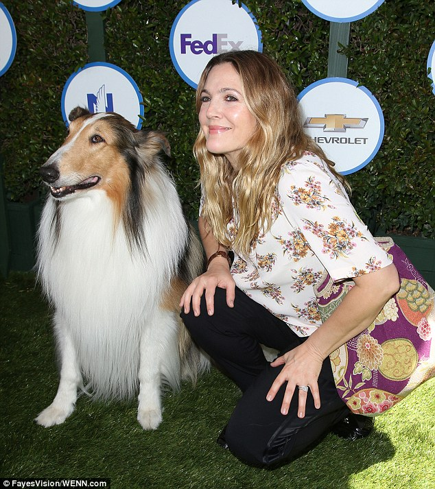 Cuddly: The doting mom was seen cuddling up to a collie as she arrived at the family-friendly event