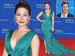 WASHINGTON, DC - APRIL 25:  Sophia Bush attends the 101st Annual White House Correspondents' Association Dinner at the  Washington Hilton on April 25, 2015 in Washington, DC.  (Photo by Michael Loccisano/Getty Images)