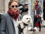 Fashion blogger, Olivia Palermo, wearing leather pants, a gray coat, red scarf, maroon purse and two-tone kicks, leaves Sant Ambreous restaurant in SoHo with her dog Mr. Butler on April 26, 2015 in New York City.  Pictured: Olivia Palermo Ref: SPL1010021  260415   Picture by: Christopher Peterson/Splash News  Splash News and Pictures Los Angeles: 310-821-2666 New York: 212-619-2666 London: 870-934-2666 photodesk@splashnews.com