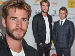 Arrivals for the Special Australians in Film world premiere screening of 'Infini' on May 6, 2015 at the Harmony Gold Theatre in Los Angeles.....Pictured: Liam Hemsworth, Luke Hemsworth..Ref: SPL1015557  060515  ..Picture by: Australians in Film / Corbis....
