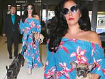 Please contact X17 before any use of these exclusive photos - x17@x17agency.com   PREMIUM EXCLUSIVE - Lady Gaga was spotted in a brIght floral dress at LAX.  The pop icon was accompanied by two dogs, in shades and long black locks, on Friday, May 8, 2015   X17online.com