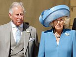 (L-R) Britain's Prince Charles, Prince of Wales, his wife Camilla, Duchess of Cornwall, Britain's Prince Edward Earl of Wessex and Sophie, Countess of Wessex arrive for a garden party held at Buckingham Palace, central London on May 12, 2015. AFP PHOTO / POOL /John StillwellJOHN STILLWELL/AFP/Getty Images