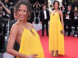 Mandatory Credit: Photo by David Fisher/REX Shutterstock (4770750a)\n Noemie Lenoir\n 'Standing Tall' premiere and opening ceremony, 68th Cannes Film Festival, France - 13 May 2015\n \n