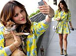 EXCLUSIVE FAO DAILY MAIL ONLINE GBP 40 PER PICTURE\n Mandatory Credit: Photo by Startraks Photo/REX Shutterstock (4770990c)\n Katharine McPhee with dog Larry\n Katharine McPhee out and about, Los Angeles, America - 13 May 2015\n Katharine McPhee and Her Best Friend Larry\n