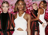NEW YORK, NY - MAY 14:  Models Gigi Hadid and Jourdan Dunn attend Maybelline New York's 100 Year Anniversary at IAC Building on May 14, 2015 in New York City.  (Photo by Mireya Acierto/Getty Images)