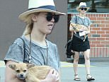 Exclusive... 51742898 'X-Men: Apocalypse' actress Jennifer Lawrence and her dog stop by a Rite-Aid to pick up a prescription in Beverly Hills, California on May 16, 2015. Jennifer has been spending a lot of time with Chris Martin lately and is said to be extremely happy. FameFlynet, Inc - Beverly Hills, CA, USA - +1 (818) 307-4813