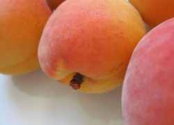 Smoothie pomme et abricot