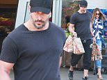 Picture Shows: Joe Manganiello, Sofia Vergara  May 31, 2015\n \n Engaged couple Sofia Vergara and Joe Manganiello stop by Bristol Farms in West Hollywood, California to stock up on groceries. It was recently announced that Sofia will be honored by the SAG Foundation with an Actors Inspiration Award. \n \n Non-Exclusive\n UK RIGHTS ONLY\n \n Pictures by : FameFlynet UK � 2015\n Tel : +44 (0)20 3551 5049\n Email : info@fameflynet.uk.com