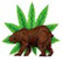 California Cannabis Hemp Initiative 2016