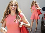 Picture Shows: Sofia Vergara  June 08, 2015    'Modern Family' star Sofia Vergara enjoys some solo shopping in Hollywood, California.    Earlier in the day the actress attended the SAG Foundation L.A. Golf Classic event in Burbank.    Exclusive - All Round  UK RIGHTS ONLY    Pictures by : FameFlynet UK © 2015  Tel : +44 (0)20 3551 5049  Email : info@fameflynet.uk.com