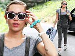 Picture Shows: Miley Cyrus  June 11, 2015\n \n Miley Cyrus hops out of her car for a few seconds, then runs back inside in Los Angeles, California. The singer, dressed in paint covered overalls, appeared to have second thoughts about visiting the house she stopped at. \n \n Non Exclusive\n UK RIGHTS ONLY\n \n Pictures by : FameFlynet UK © 2015\n Tel : +44 (0)20 3551 5049\n Email : info@fameflynet.uk.com