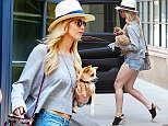 EXCLUSIVE: Jennifer Lawrence was spotted house shopping this afternoon with her dog in New York City, New York.  Pictured: Jennifer Lawrence Ref: SPL1050684  100615   EXCLUSIVE Picture by: Blayze / Splash News  Splash News and Pictures Los Angeles: 310-821-2666 New York: 212-619-2666 London: 870-934-2666 photodesk@splashnews.com