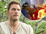 No Merchandising. Editorial Use Only. No Book Cover Usage.. Mandatory Credit: Photo by Moviestore/REX_Shutterstock (4313745c).. Chris Pratt.. 'Jurassic World' Film - 2015.. ..