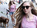 amanda seyfried and dog