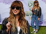 Foxes backstage at the Isle of Wight Festival Near Far.jpg