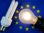 A picture dated 26 February 2007 shows a conventional light bulb (R) and an energy saving lamp on an EU flag in Schwerin, Germany. On 23 January 2008 the European Commission will release detailed plans on how member states will reach the EU's overall target of cutting the bloc's carbon dioxide emissions by 20 per cent by the year 2020.  EPA/JENS BUETTNER