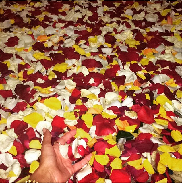 Everything's coming up roses: Michelle also shared a romantic snap of a rose petal bath
