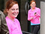 **EXCLUSIVE** Amy Meredith Poehler leaving yoga session in Sydney.