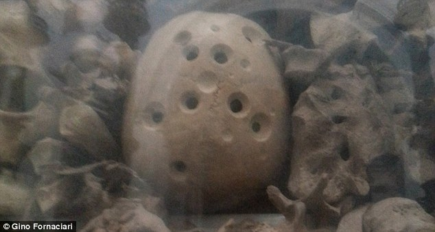 A holey skull (shown) displayed in an Italian Cathedral has 16 circular marks from drills because skull powder was collected and used to treatparalysis, epilepsy and stroke in the early 18th century, claims experts