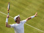 LONDON, ENGLAND - JUNE 16:  Andy Murray of Great Britain serves in his men's singles first round match against Yen-Hsun Lu of Chinese Taipei during day two of the Aegon Championships at Queen's Club on June 16, 2015 in London, England.  (Photo by Clive Brunskill/Getty Images)