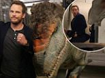 """actor Chris Pratt being the victim of a fake dinosaur prank. In a video posted by SA Wardega (the man behind the spider-dog viral), the star of Jurassic World is seen walking with some people down a corridor when suddenly a roaring Tyrannosaurus rex quickly came at him before a Velociraptor also joined in the """"attack"""". The actor jumped back against a door and shouted """"Oh sh*t"""" before realising that the dinosaur's were fake and waved his fist at them. As the prankster revealed himself, Pratt called him a """"motherf**ker"""" before praising how great they look and spotting the hidden camera's filming the prank.\n"""