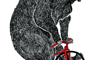 bear n bike web