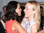 Mandatory Credit: Photo by Erik Pendzich/REX Shutterstock (4881351n)  Rosario Dawson, Chloe Sevigny  Anniversary screening of 'Kids' film at BAMcinemaFest, New York, America - 25 Jun 2015