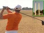Golf cricket