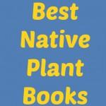BWG NP Books