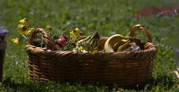 A Festa da Colheita ou Festa de Shavuot