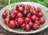 Burlat cherries.