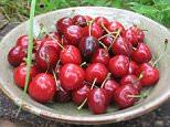 Burlat cherries.