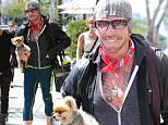 mickey rourke and dog