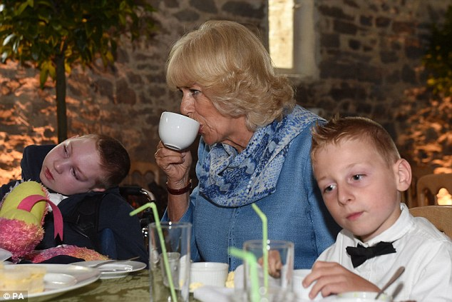 The Duchess of Cornwall meets twins Oliver (left) and Evan Pedrick during a tea party
