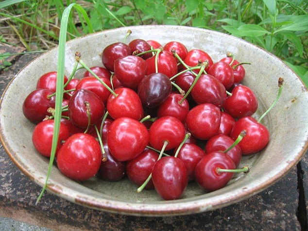 Studies reveal that cherries are unusually rich in health-promoting compounds which can trim our tummies, help to prevent heart disease, make exercise easier and even improve our sleep