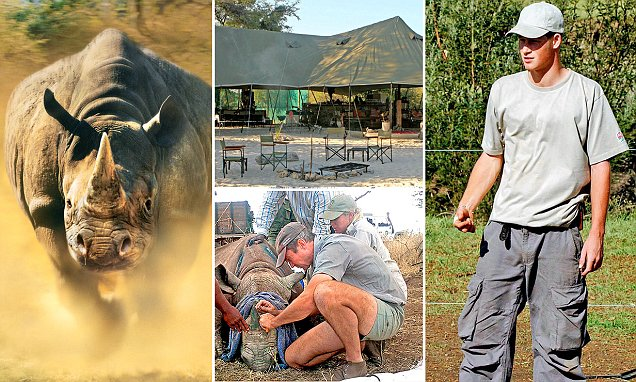 Prince Harry back in the front line fighting ivory poachers over Namibia