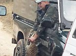 *** EXCLUSIVE - VIDEO AVAILABLE ***  KRUGER NATIONAL PARK, SOUTH AFRICA - JULY 02: A leopard attacks a field guide Curtis Plumb in an open safari vehicle at Kruger National Park on July 2, 2015 in South Africa.  A BRITISH safari guide has been hospitalised after a leopard attacked him in the open-top jeep he was travelling in. Curtis Plumb, 38, was bitten and clawed in the arm after the predator launched itself at his vehicle in Kruger National Park, South Africa. The mauling just after 1pm on Thursday was caught on camera by tourist Grant Ford and his 13-year-old son, who watched the horrifying incident unfold before their eyes. Eyewitness accounts say Mr Plumb stopped his vehicle full of tourists to watch the big cat when it suddenly attacked. In the chaos that followed, the safari vehicle and another car in the convoy both ran over the leopard with their wheels. In a statement William Mambasa, general manager of Kruger National Park, thanked the tourist from the other vehicle for s