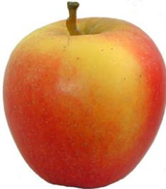 Big apple: They have been proved to help in the fight against cancer
