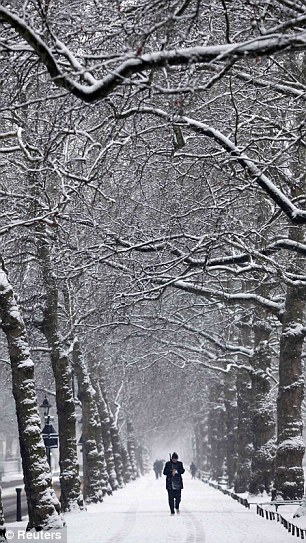 St James's Park in central London January 13,