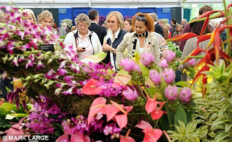 All natural: Members of the public admire garden displays at last year's Chelsea Flower Show. This year organisers are allowing fake grass for the first time
