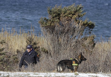 Grim search: Police today continued with their search along the beach-front in Sussex County, Long Island