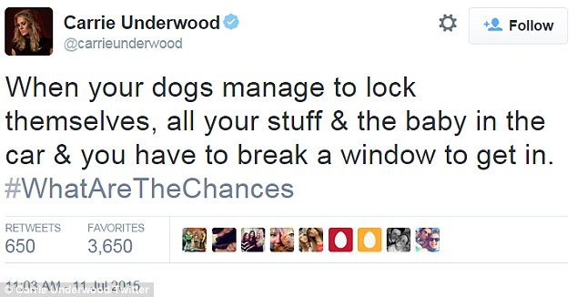 Accident: 'When your dogs manage to lock themselves, all your stuff & the baby in the car & you have to break a window to get in #WhatAreTheChances'