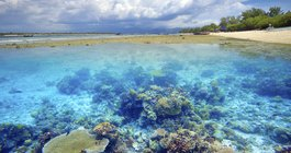 $1699 -- Great Barrier Reef Trip w/Luxe Stay & Cruise