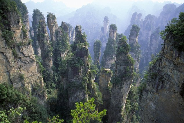 War of words: Managers at Zhangjiajie National Forest claim their spectacular sandstone pillars were clearly the inspiration for the 'Hallelujah Mountains' on Pandora, the film's densely forested moon setting