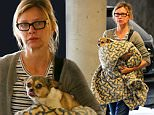 EXCLUSIVE TO INF.\nJuly 16, 2015: Calista Flockhart is seen taking her adorable dog to the vet in Los Angeles, California.\nMandatory Credit: Sasha Lazic/INFphoto.com Ref: infusla-257